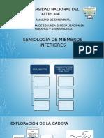 Semiología de Miembros Inferiores