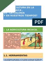 La Agricultura Inca,
