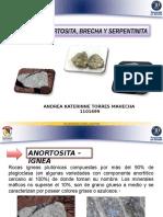 Andrea Torres - 1101699