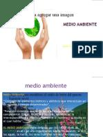 20649549-Medio-Ambiente La Oropéndola 100%sostenible