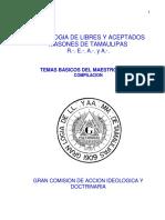 temas maestro GLT.pdf