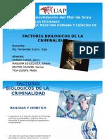 Factores Biologicos de La Criminalidad Diapo