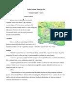 Caracteristicile Climatice Din Zona Orasului Craiovei