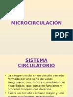 MICROCIRCULACIÓN