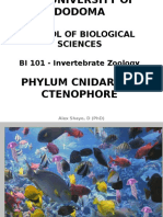 Lecture 5_Cnidarian and Ctenophores.ppt Final