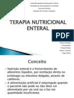 Slide Sobre Terapia Nutricional Enteral