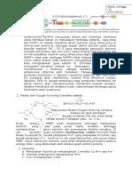 Cara Kerja Herbisida DMCU dan Paraquat