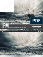 Ipm Integrated Well Abandonment Br