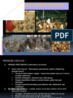 2-peranan-ternak-unggas.pptx