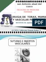 Suturas e Injertos Vasculares 2011