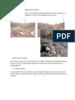 Diagnostico de La Poblacion Palomar Huayhuasi