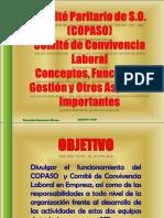 Funciones Copaso -Comité Convivencia