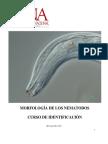 ManualIdentif 2013.pdf