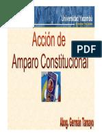 Accion de Amparo Constitucional