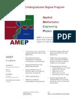 AMEP_flyer2016.pdf