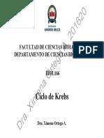 201620 BIOL166 Clase 08 Ciclo de Krebs
