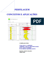 42387866-Curso-de-Perfiles.pdf