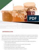 V-Ingenieria de Proyecto -Frutilla