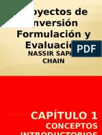 Proyectos de Inversion Cap 2 y 3