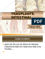 Trasplante Intestinal
