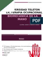 biomecanica-de-la-mano.pptx