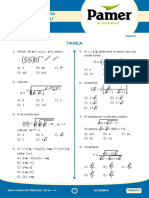 Pamer Algebra Completo