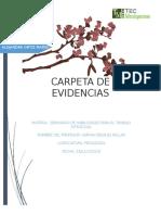 CARPETA_DE_EVIDENCIAS[1]