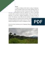 Landscape Paper