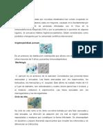 Coccidias Intestinales. Cryptosporidium Parvum