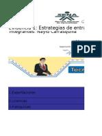 Formato Estrategia de Entrada Al Mercado Internacional-1