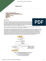 Guía Clínica de Manejo de Insulina en La Diabetes Tipo 2