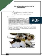 BIOECOLOGIA PRACTICA3
