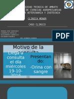 Caso Clinica Renal Majo (1)