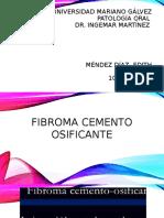 Segunda Exposicion Fibroma
