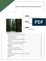 Trabajo de Topografia II Seccion Tipica
