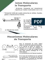 Analogía Entre Transportes