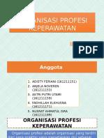 ORGANISASI PROFESI KEPERAWATAN(ppt).pptx