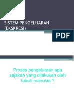 Sistem Pengeluaran