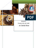 ensayo grupal produccion de cafe