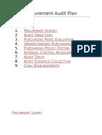 Procurement Audit Plan.docx