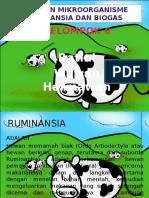 Fix Mikroorganisme Ruminansia Dan Biogas