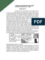 Intermedio Temprano - Intermedio Tardío