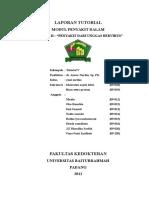 DIARE BERAT TUTOR 2.docx