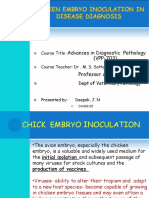 Chicken Embryo Inoculation as a Diagnostic Tool