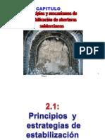 Capítulo 2A- Principios, mecanismos de estabilizacion.pptx