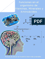 Libro Vitaminas Minerales y Aminoacidos