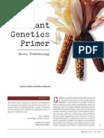 A Plant Genetics Primer