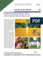 Ficha Gestion Mieles Del Sur