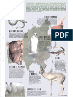 ANIMALES DE ASIA.pdf