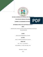 Informe Practicas II NUEVO 1